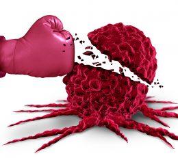 Hrvatski sabor usvojio nacionalnu strategiju protiv raka; Kroz deset godina imamo priliku spasiti 110.000 godina života!